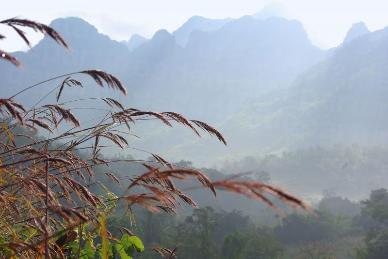 Chiang Dao National Park