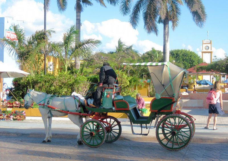 Cozumel Horse drawn carriage